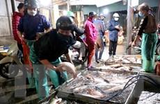 Hà Nội đảm bảo nhu cầu lương thực cho người dân trong mùa dịch bệnh