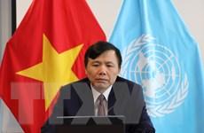 Việt Nam ủng hộ giải pháp hai nhà nước cho vấn đề Palestine-Israel