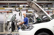 Kinh tế Đức có thể sụt giảm xuống mức thấp nhất trong 50 năm