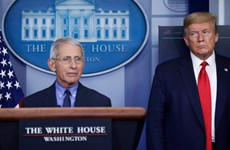 Nội bộ chính quyền Mỹ bất đồng về tiến trình mở cửa nền kinh tế