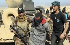 Mỹ tuyên bố tiêu diệt hai thủ lĩnh tổ chức Nhà nước Hồi giáo ở Syria