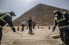 Dịch COVID-19 tại Ai Cập, Saudi Arabia tiếp tục diễn biến phức tạp