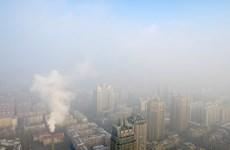 IMF kêu gọi chấm dứt việc trợ cấp nhiên liệu hóa thạch