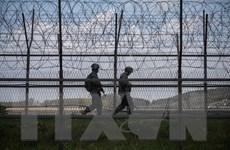 Hội đồng An ninh Hàn Quốc họp bàn về vấn đề Triều Tiên