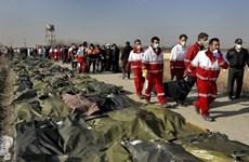 Iran đồng ý bồi thường cho các nạn nhân vụ bắn nhầm máy bay Ukraine