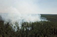 Nga: Khói mù do cháy rùng bao phủ các thành phố vùng Siberia