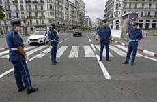 Algeria tái phong tỏa hàng chục tỉnh thành do COVID-19