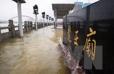 Trung Quốc: Mưa lũ gây thiệt hại về người ở tỉnh Hồ Bắc