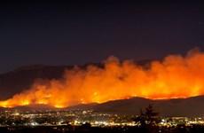 Mỹ: Sơ tán gần 8.000 người do cháy rừng tại Nam California