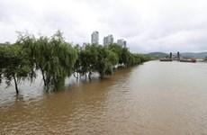 Mưa lớn và lũ lụt gây thiệt hại nặng nề tại Hàn Quốc