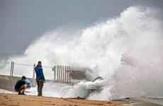 Mỹ: Bão Isaias mạnh lên, bắt đầu đổ bộ vào bờ biển phía Đông