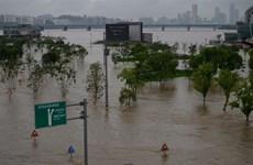 Mưa lớn kéo dài gây ngập lụt nghiêm trọng trên Bán đảo Triều Tiên