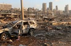 Nhiều quốc gia nỗ lực giúp đỡ Liban khắc phục hậu quả vụ nổ ở Beirut