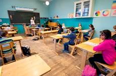 Các cố vấn y tế chính phủ Anh ủng hộ trường học mở cửa trở lại