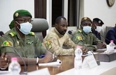 Tổ chức Quốc tế Pháp ngữ đình chỉ tư cách thành viên của Mali