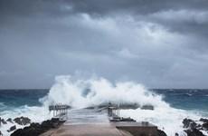 Hình ảnh siêu bão Laura càn quét qua hai bang miền Nam của Mỹ