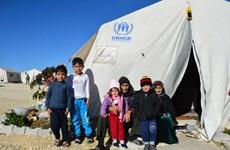 Hội đồng Bảo an họp về tình hình nhân đạo ở Syria và vấn đề Triều Tiên
