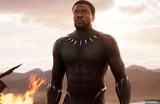 Nam diễn viên 'Black Panther' qua đời sau 4 năm chống chọi với ung thư
