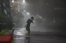Hàn Quốc: Thành phố Busan hứng chịu thiệt hại do bão Maysak