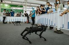 """Robot trí tuệ nhân tạo """"lên ngôi"""" trong dịch COVID-19"""