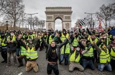 Pháp cấm các cuộc biểu tình của phong trào Áo vàng