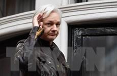 Anh: Hoãn phiên tòa xem xét dẫn độ nhà sáng lập WikiLeaks sang Mỹ