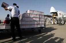 LHQ cập nhật tiến độ viện trợ khẩn cấp các nạn nhân vụ nổ ở Beirut