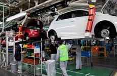 'Brexit cứng' sẽ gây hậu quả nặng nề với ngành ôtô châu Âu và Anh