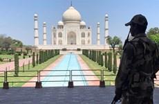 Ấn Độ tiếp tục nới lỏng phong tỏa bất chấp dịch bệnh