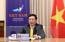 Phó Thủ tướng tham dự Phiên họp trực tuyến cấp cao của HĐBA LHQ