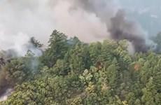 Mỹ: Cháy rừng thiêu rụi diện tích kỷ lục tại bang California