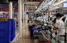 Cơ hội cho các nhà sản xuất xe đạp trong đại dịch COVID-19