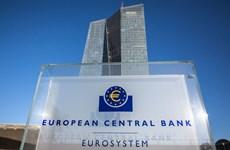 ECB không thay đổi lãi suất chủ chốt, có thể đưa ra các gói kích thích