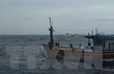 Đã cứu được 3 ngư dân Bình Định trôi dạt trên biển do bão