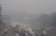 New Delhi trải qua ngày có chất lượng không khí tệ nhất trong năm