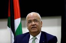 Nhà đàm phán hàng đầu của Palestine qua đời do COVID-19