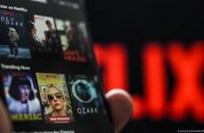 Netflix có nhiều nội dung xuyên tạc, vi phạm pháp luật Việt Nam