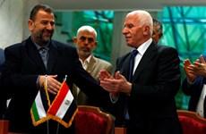 Fatah và Hamas nối lại đối thoại nhằm chấm dứt chia rẽ nội bộ