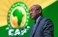Phó Chủ tịch FIFA lĩnh án phạt do sai phạm về tài chính