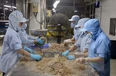 Indonesia đề cao sự tăng trưởng kinh tế của Việt Nam trong đại dịch