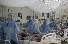 Tổng thống Brazil vẫn lạc quan về tình hình dịch bệnh trong nước