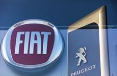EU chấp thuận thương vụ sáp nhập giữa PSA và Fiat Chrysler