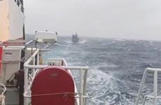 Bình Định: Tàu kiểm ngư cứu nạn thành công tàu cá hỏng máy