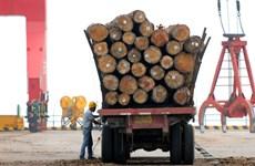 Trung Quốc tiếp tục hạn chế nhập khẩu gỗ từ Australia