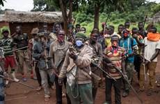 Các nhóm nổi dậy lớn ở CH Trung Phi đơn phương ngừng bắn