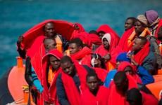 2.170 người di cư thiệt mạng khi vượt biển tới Tây Ban Nha năm 2020