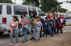 Tổng thống Trump gia hạn 2 lệnh cấm nhập cư trước khi rời nhiệm sở