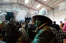 Pháp: Bất chấp dịch bệnh, hàng nghìn người tổ chức tiệc đón năm mới