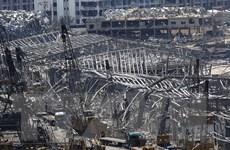 Liban: Interpol truy nã một số người liên quan đến vụ nổ ở cảng Beirut