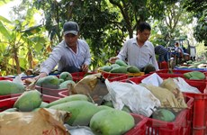 Tạo động lực mới cho phát triển nông nghiệp, xây dựng nông thôn mới